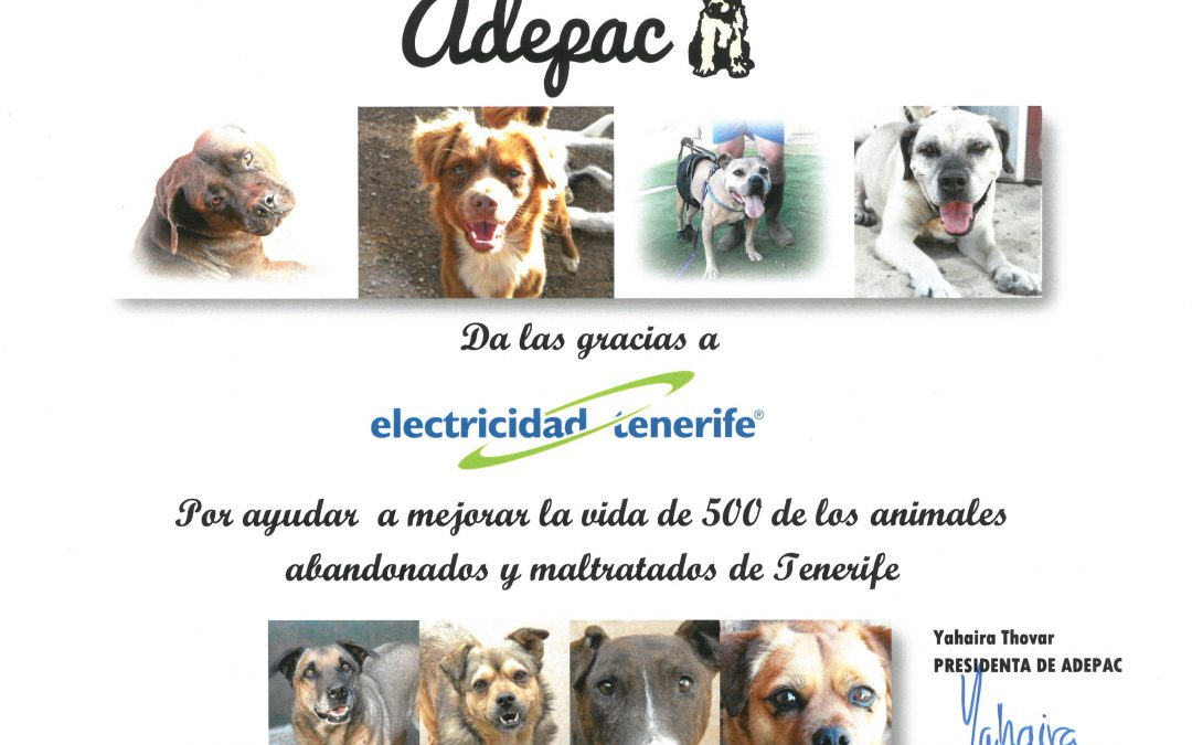 Colaborando con Adepac